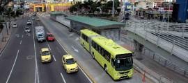 Buses metrolinea