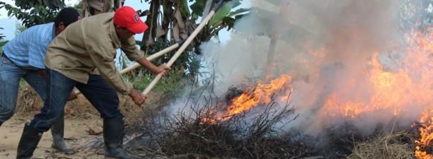 Cómo iniciar un incendio forestal 7
